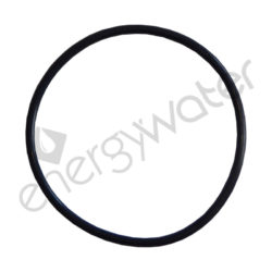 O-ring for filter housing's head 2P white Proteas